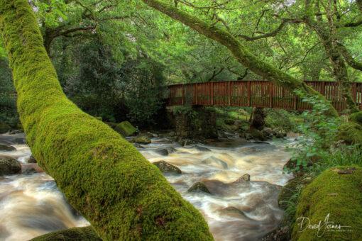 Shaugh Bridge, Dartmoor