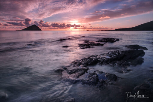 Mewstone, Wembury Beach, Plymouth