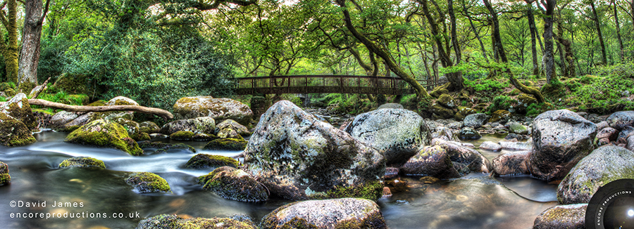 Shaugh Bridge, Dartmoor