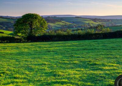 Barley Meadow, Crockernwell, Dartmoor