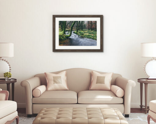 River Meavy, Dartmoor National Park