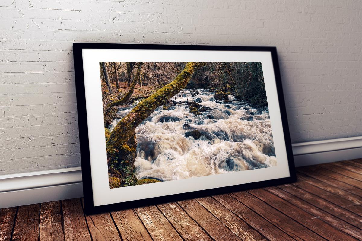 River Plym, Shaugh Prior, Dartmoor