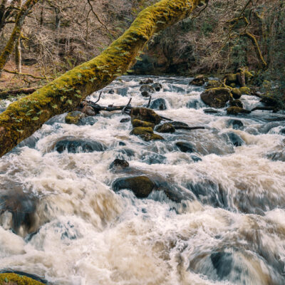 River Plym, Shaugh Prior, Dartmoor