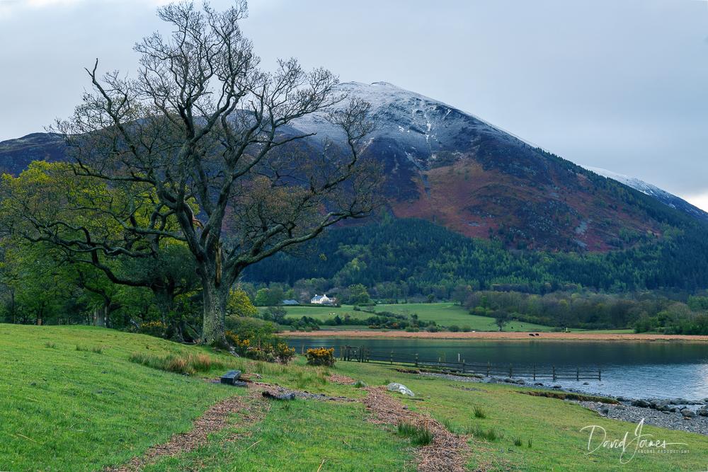 Bassenthwaite Lake, Cumbria
